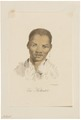 Homo sapiens - Khoikhoi, Zuid-Afrika - 1700-1880 - Print - Iconographia Zoologica - Special Collections University of Amsterdam - UBA01 IZ19400109.tif