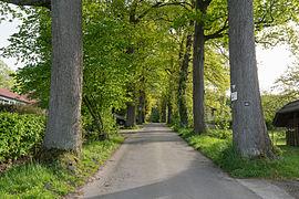 Horn-Bad Meinberg - 2015-05-10 - ND Eichenallee Kirche Leopoldstal (3).jpg