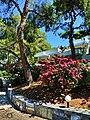 Hotel Poseidon Resort,Grecja - panoramio (17).jpg