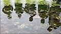 IVN natuureducatie-excursie Wassenaar (Lentevreugd)-01.jpg