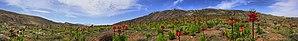 Sepidan County - Image: Imerial crown