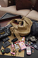 In my bag nov2008.jpg