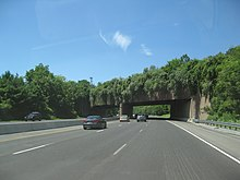 A six-lane freeway in a wooded area with an overpass containing trees