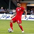 Iran vs. Montenegro 2014-05-26 (073).jpg