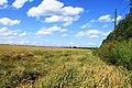 Iskitimsky District, Novosibirsk Oblast, Russia - panoramio (31).jpg