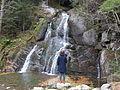It includes the Moss Glen Falls, where Deer Hollow Brook enters Alden Meadow Brook..JPG