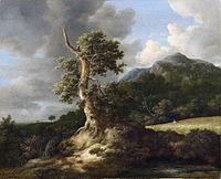 Jacob van Ruisdael - Bergachtig landschap met knoestige eik voor een korenveld.jpg