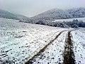 Jakuboviansky les v zime - panoramio.jpg