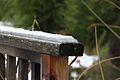 Jardin Compans Caffarelli sous la neige (8399979582).jpg