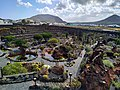 Jardin aux cactus Lanzarote.jpg