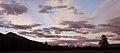 Jasper Dawn 4 (229208308).jpg