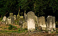 Jewish cemetery Otwock Karczew Anielin IMGP6709.jpg