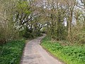 Jordans Lane, approaching Bull Hill - geograph.org.uk - 408229.jpg
