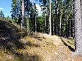 Künstlicher Hügel bei Ruine Dürnstein 01.jpg