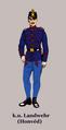 K.u. Honved Infanterie.png