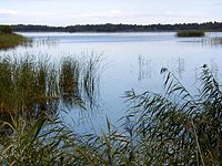 Kaņiera ezers pie Lapmežciema.jpg