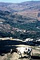 Kabylei01.jpg