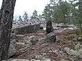Kallioaluetta hautaröykkiöiden vierellä.jpg