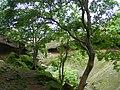 Kanheri Budhist Caves Mumbai by Dr Raju Kasambe DSCF9917 (3) 19.jpg