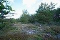 Kauparve - KMB - 16001000146826.jpg