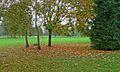 Kibworth Golf Club - geograph.org.uk - 589626.jpg