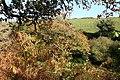 Kingston, between Westcombe Beach and Okenbury - geograph.org.uk - 605595.jpg