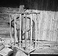 Koš za listje pri Kocjanu, Staro Apno 1964.jpg