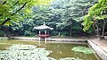 Korea-Seoul-Changdeokgung-Huwon-01.jpg
