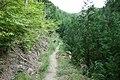 Koya Pilgrimage Routes(Nyonin-michi)16.jpg