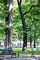 Kraków, Planty - fotopolska.eu (338600).jpg
