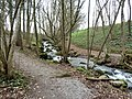 Krebsbach, Wollerau, Kanton Schwyz, Schweiz.jpg