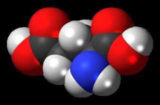Glutamic acid amino acid