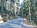 L94 - panoramio.jpg