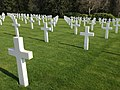 LACWM gravestones III.jpg