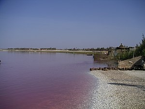 Lac Rose in Senegal.jpg
