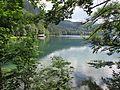 Lacul Alpsee5.jpg