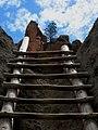 Ladder at Bandelier National Monument.jpg