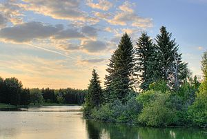 William Hawrelak - View of the lake in Hawrelak Park, Edmonton.