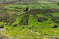 Landscape from Phaistos.jpg