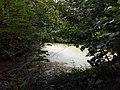 Landschaftsschutzgebiet Warmenau-Ufer LSG OS 00019 Datei 45.jpg