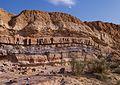 Layers of sedimentary rock in Makhtesh Ramon (50755).jpg