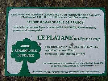 Arbres remarquables de France — Wikipédia