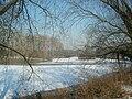 Le parc de Lormoy sous la neige - 20090110 (1).jpg
