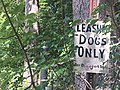 Leashed Dogs Only.jpg