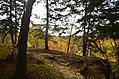 Ledges at Cuyahoga Valley National Park (10544173615).jpg