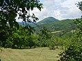 Lepenica, Serbia - panoramio.jpg