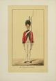 Les Régiments suisses et grisons au service de la France, BNF, PETFOL-OA-467 f19.png