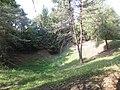 Les entonnoirs de Leintrey - Vue sur un entonnoir - 004.jpg