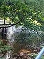Limber River.jpg