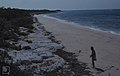 Limestone slabs behind South Beach. Little San Salvadore (38869911161).jpg